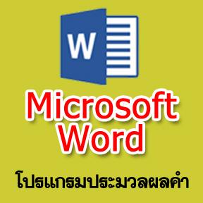 แบบทดสอบ Microsoft Word