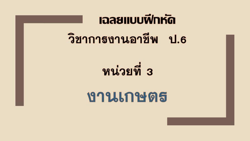 เฉลยแบบฝึกหัด วิชาการงานอาชีพ ป.6 บทที่ 3 งานเกษตร