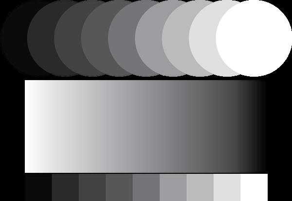 ระบบสี Grayscale